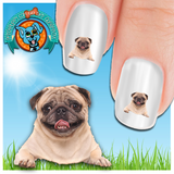 Pug Say Cheese Nail Art Decals (NOW 50% MORE FREE)