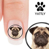 Kissable Pug Face Nail Decals (NOW 50% MORE FREE)