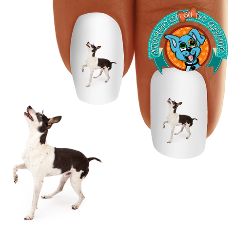 Rat Terrier Energy Nail Art (NOW 50% MORE FREE)