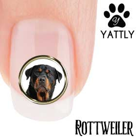 Rottweiler Portrait Nail Art ( NOW 50% MORE FREE)