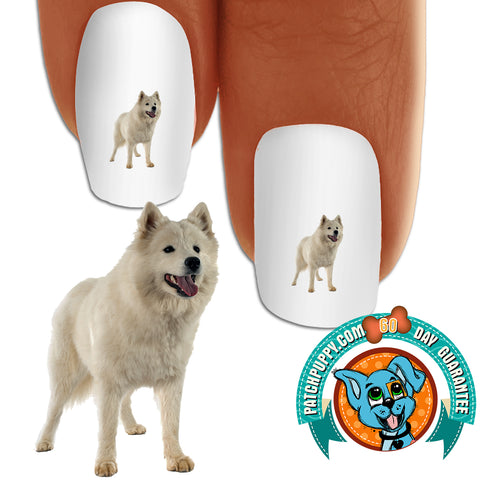 Samoyed Let's go Nail Art (NOW 50% MORE FREE)