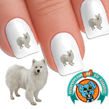 Samoyed Princess Nail Art (NOW 50% MORE FREE)