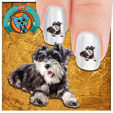 Schnauzer OHHH Did You Say Treeeat Nail Art Decals (NOW 50% MORE FREE)