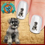 Schnauzer Posing Pretty Nail Art Decals (NOW 50% MORE FREE)