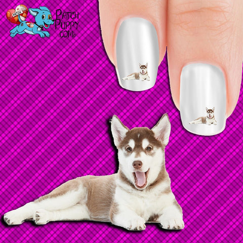 Husky - Serious Cuteness Overload Nail Art Decals (Now! 50% more FREE)
