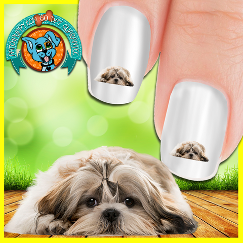 Sad Shih Tzu Nail Art (NOW 50% MORE FREE)