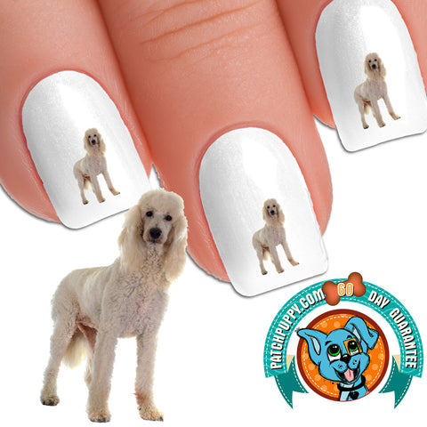 Standard Poodle White Standing Nail Art (NOW 50% MORE FREE)