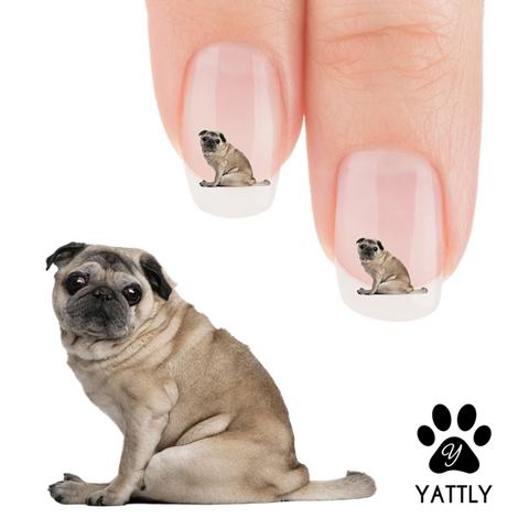 That Look Pug Nail Art Decals (NOW 50% MORE FREE)