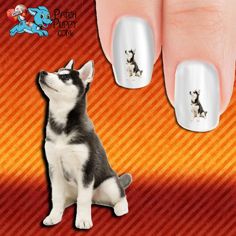 Husky - Things are looking up Nail Art Decals (Now! 50% more FREE)