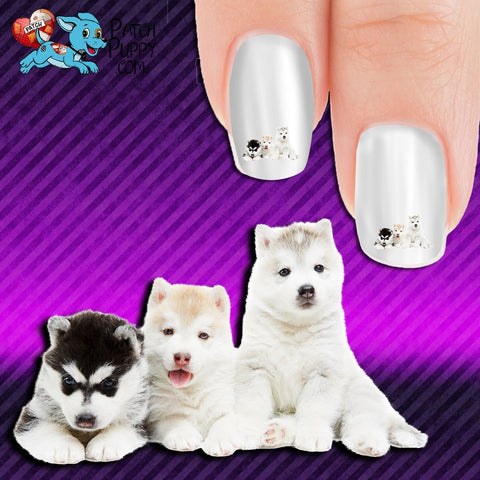Huskies - Triple Threat Nail Art Decals (Now! 50% more FREE)