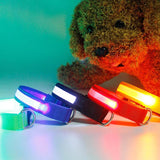 Rechargeable, Lighted Dog Collar