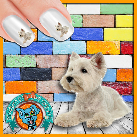 West Highland White Terrier Laying down Nail Art Decals (Now! 50% more FREE)