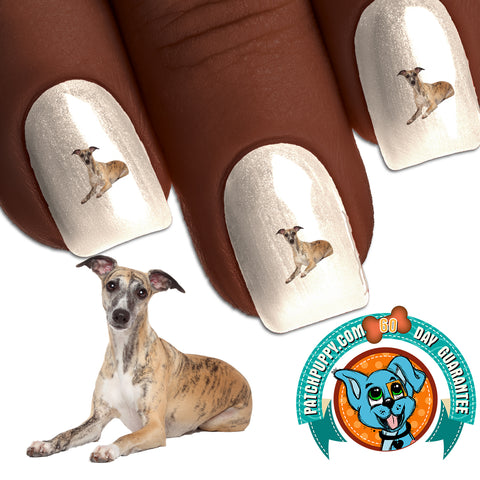 Whippet - Treat Nail Art (NOW 50% MORE FREE)