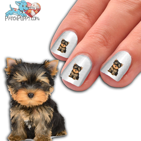 Yorkie Puppy - Way too Cute - Nail Art (NOW 50% MORE FREE)
