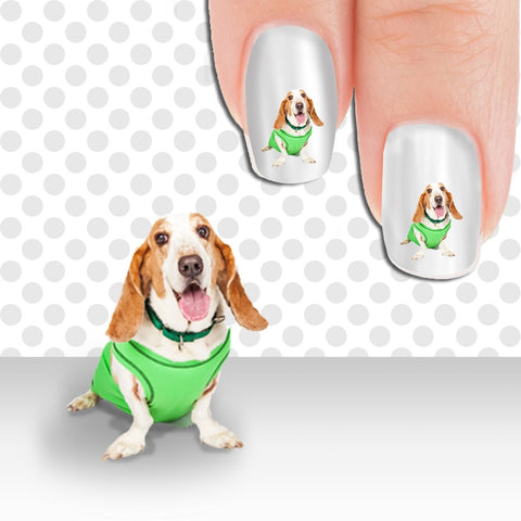 Basset Hound Am I cute yet? Nail Art Decals (Now 50% More FREE)