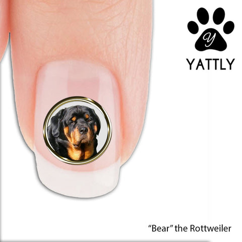Bear the Rottweiler - Nail Art Decals (Now! 50% more FREE)