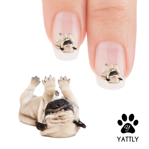 Pug Give me a Belly Rub Pug Nail Art Decals (NOW 50% MORE FREE)