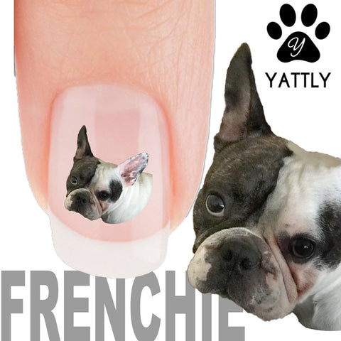 French Bulldog Not Me - Nail Art Decals (Now! 50% more FREE)