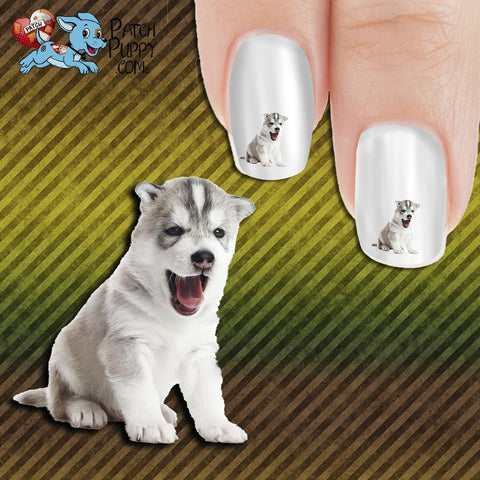 Oh My Goodness Husky baby Nail Art Decals (Now! 50% more FREE)