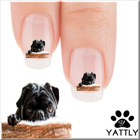 Pug About that time Nail Art (NOW 50% MORE FREE)