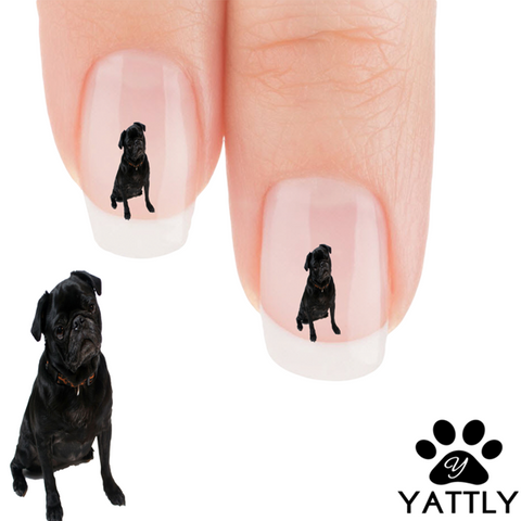 Pug What did you say to me? Nail Art (NOW 50% MORE FREE)