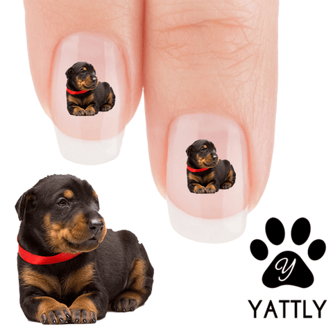 Doberman Just chill bro Nail Art ( 50 % MORE FREE)