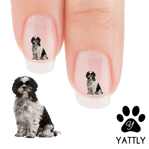 Sweet Shih Tzu Nail Art Decals (Now! 50% more FREE)