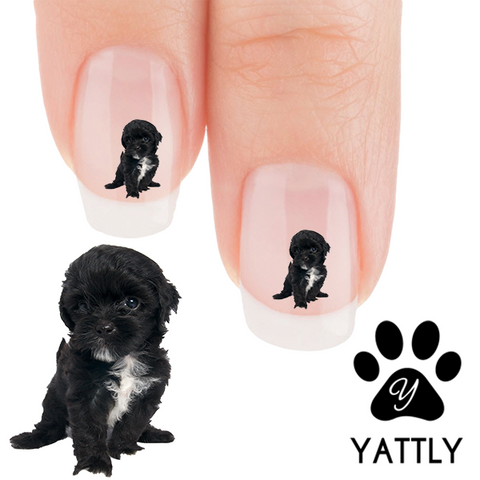 Playful Shih Tzu Nail Art Decals (Now! 50% more FREE)