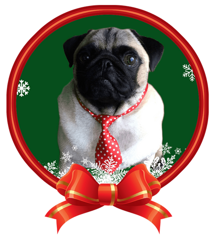 its a pug with a christmas tie nail art now 50 more free - Pug Christmas