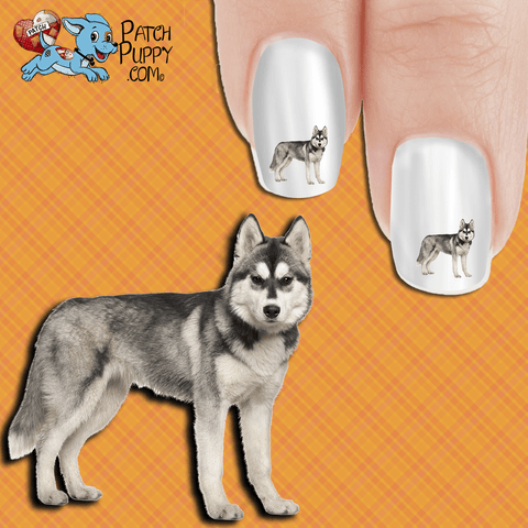 Husky - Regal Protector Nail Art Decals (Now! 50% more FREE)