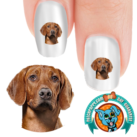 Rhodesian Ridgeback Portrait Nail Art (NOW 50% MORE FREE)