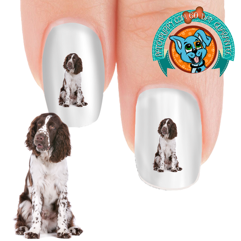 Springer Spaniel Loyal Nail Art (NOW 50% MORE FREE)