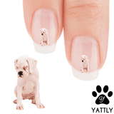 Boxer Nah, I am not Talking To You Nail Art Decals (NOW 50% MORE FREE)