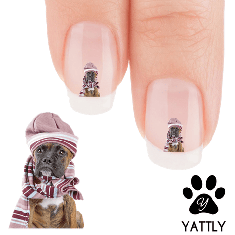 Boxer WOOF It's Cold Out There Nail Art Decals (NOW 50% MORE FREE)