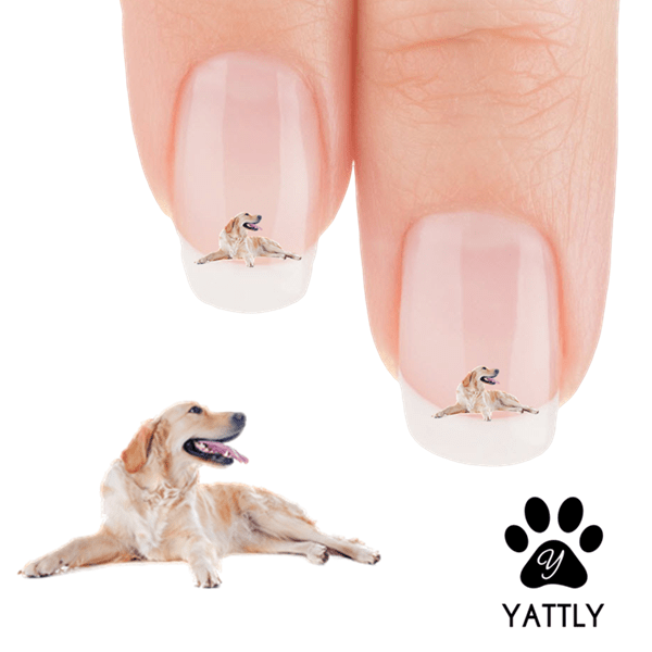 Golden Retriever Happy Dog Nail Art Decals Now 50 More Free