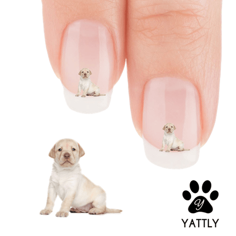 Golden Retriever I am hungry, Mom Nail Art Decals (NOW 50% MORE FREE)