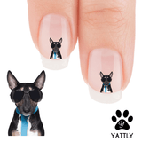 Jack Russell Terrier Lets Go Party Daddy! Nail Art Decals (NOW 50% MORE FREE)