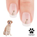 Golden Retriever Look Ma I'm Smiling Nail Art Decals ( NOW 50% MORE FREE)