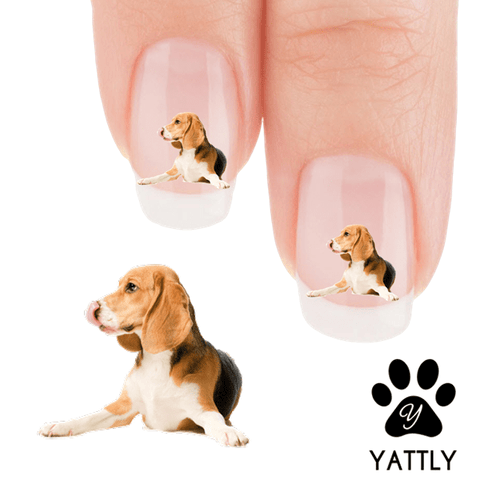 Beagle My Nose Tastes Like Chocolate Nail Art Decals (NOW  50% MORE FREE)