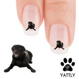 Labrador Ready, Set, Play! Nail Art Decals ( NOW 50%MORE FREE)