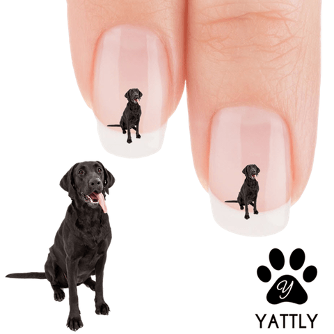 Labrador That Crazy Tongue! Nail Art Decals (NOW 50% MORE FREE)
