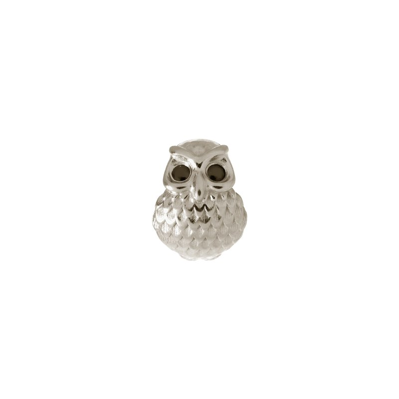 Endless Great Owl Charm