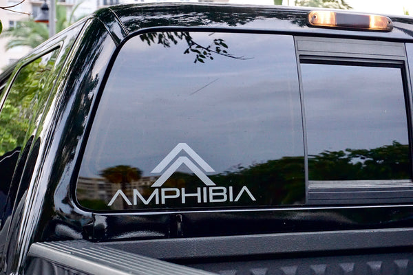 Amphibia Decal Large (Dark Grey)