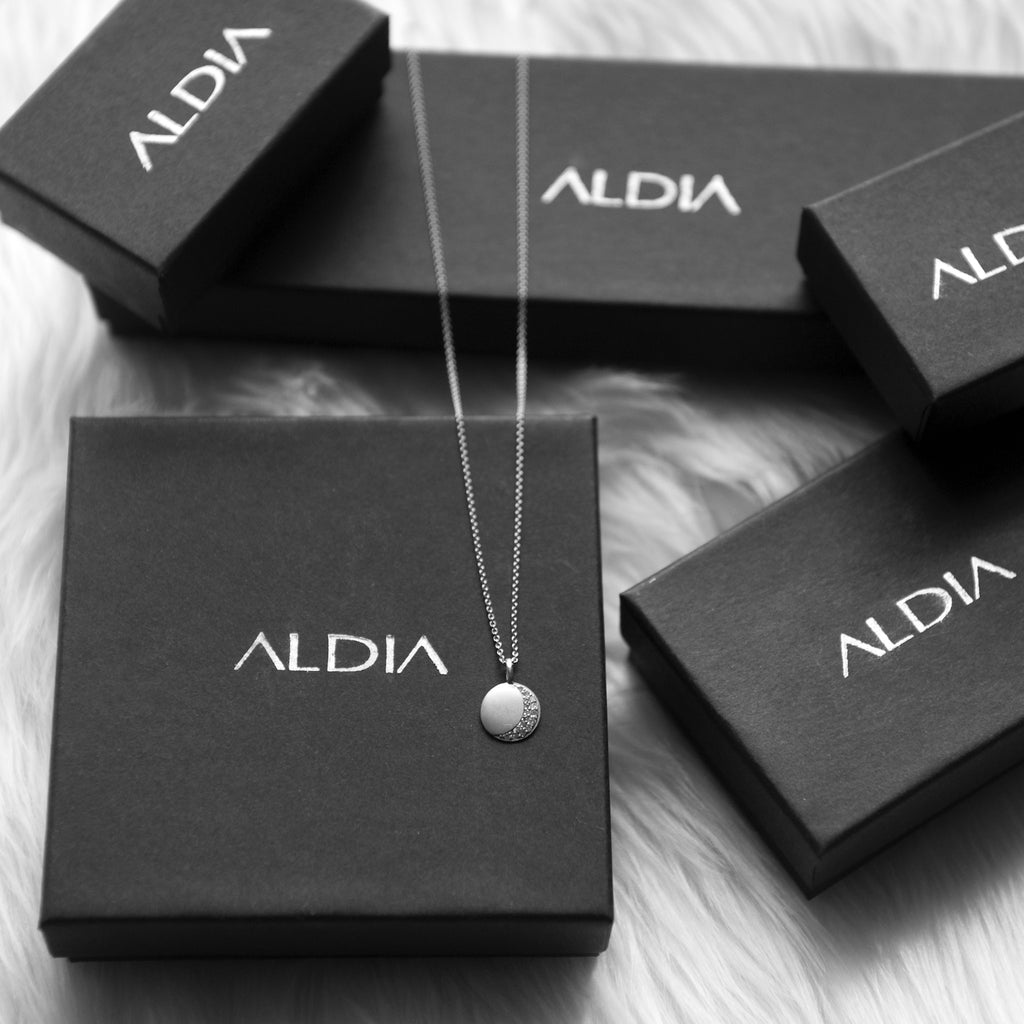 Dainty Crescent Moon Disc Necklace - Silver + Pave White Diamonds - ALDIA   - 1