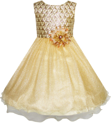 Flower Girls Dress Glitter Champagne Tulle Wedding Pageant Size 3-14 Years