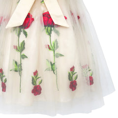 Girls Dress Champagne Rose Flower Embroidery Heart Shape Back Size 7-14 Years