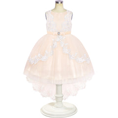 Flower Girl Dress Lace Hi-low Skirt Champagne Wedding Pageant Size 6-12 Years