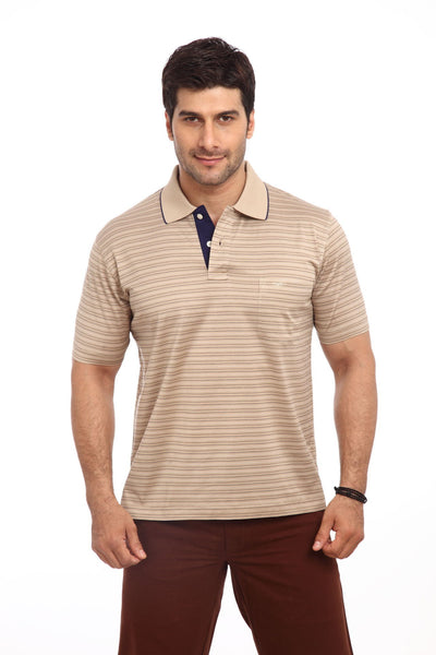 ColorPlus Brown Men's T-Shirt