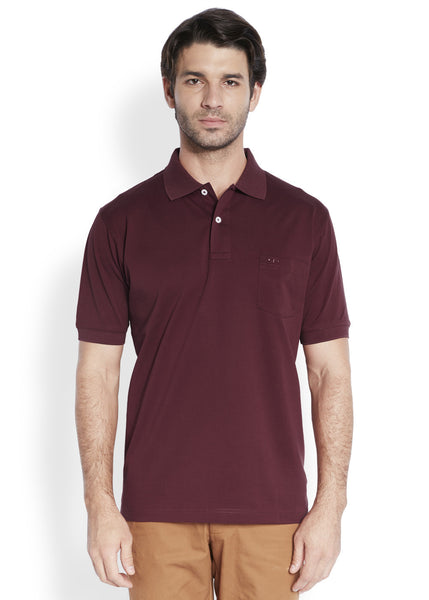 ColorPlus Maroon Men's T-Shirt