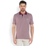 ColorPlus Medium Maroon Men's T-Shirt